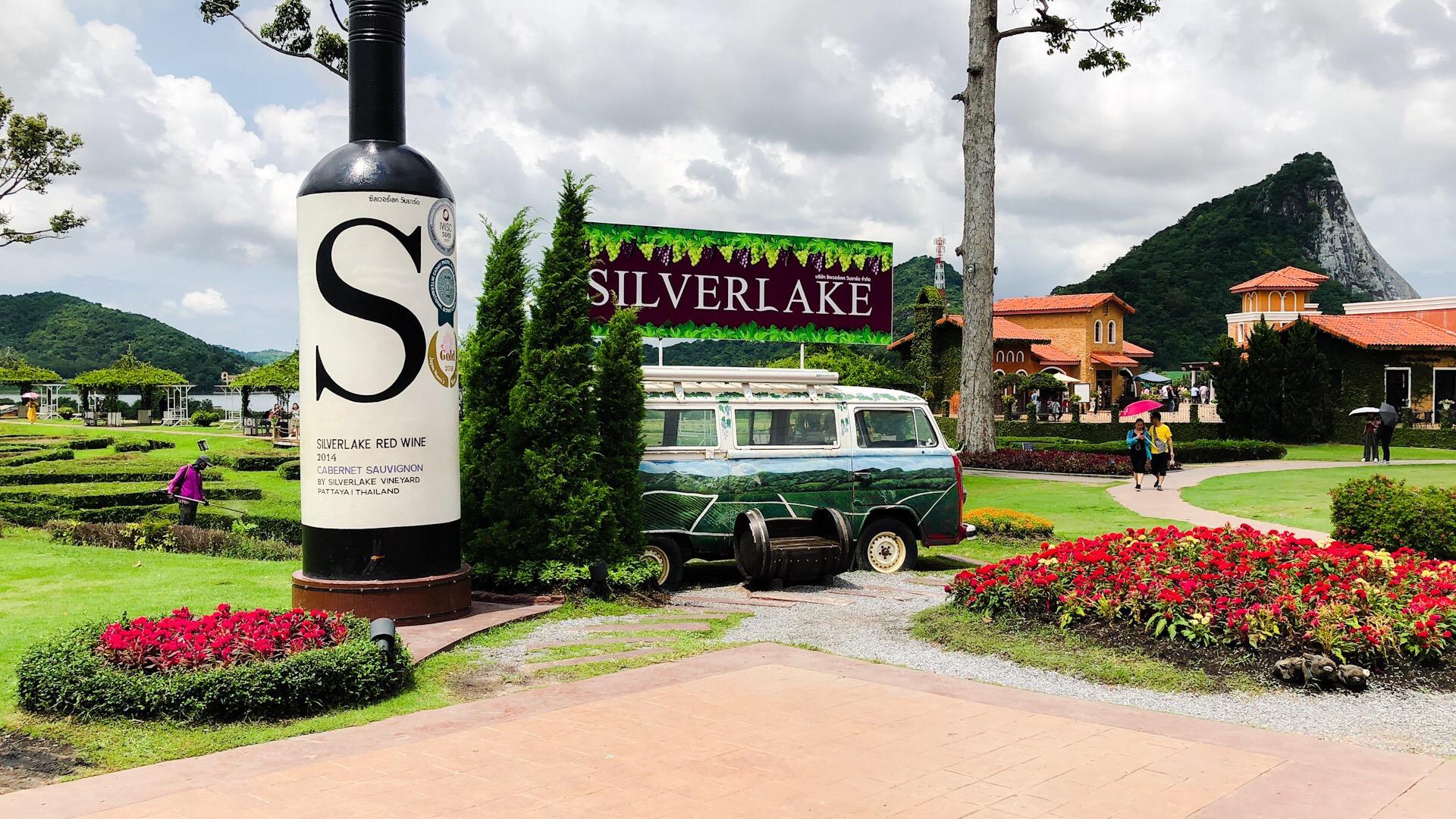 Silver lake vineyard