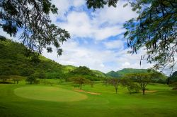 Khao Yai Golf Club   Green
